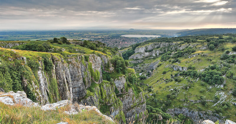 Withy Water Cheddar Gorge